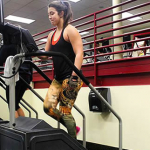 How to use the gym stair machine most correctly